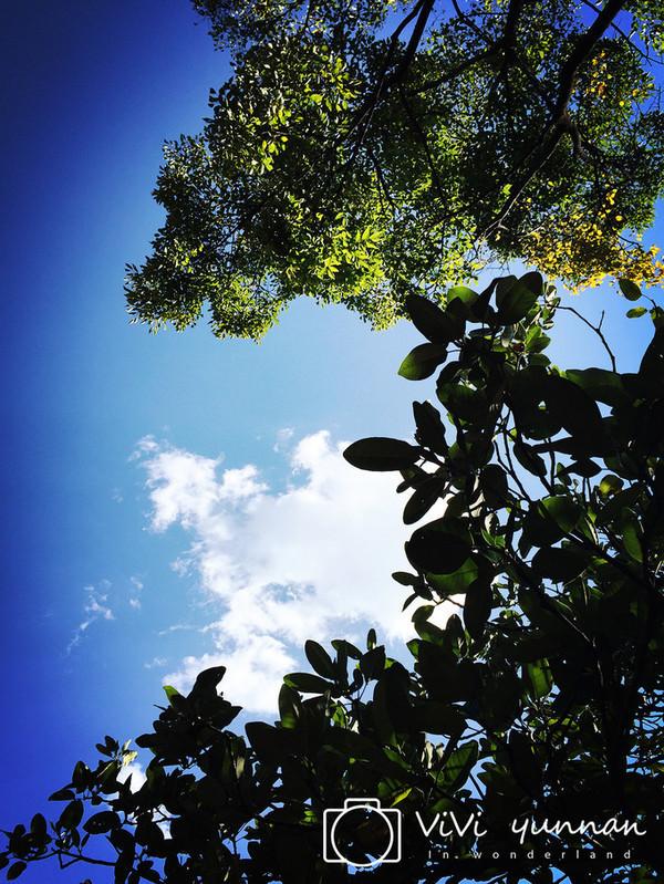 岁月静好,阳光明媚,只因是在丽江 云南攻略