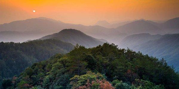 """古山上林木葱茏,遮天盖日,天然次生林发育完好,古田山自然区气候宜人,冬暖夏凉,有""""浙西兴安岭""""之称。"""