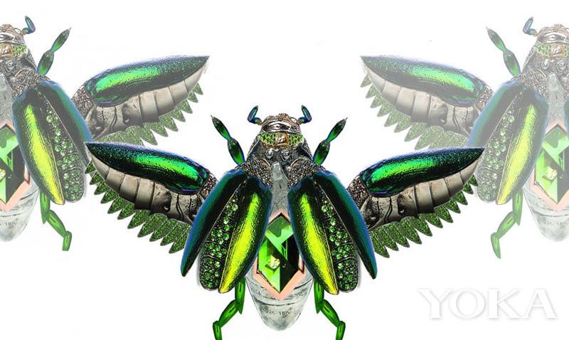 4万年美女牙金龟子保镖胆大价值做珠宝甲虫连美女与猛犸电视剧图片