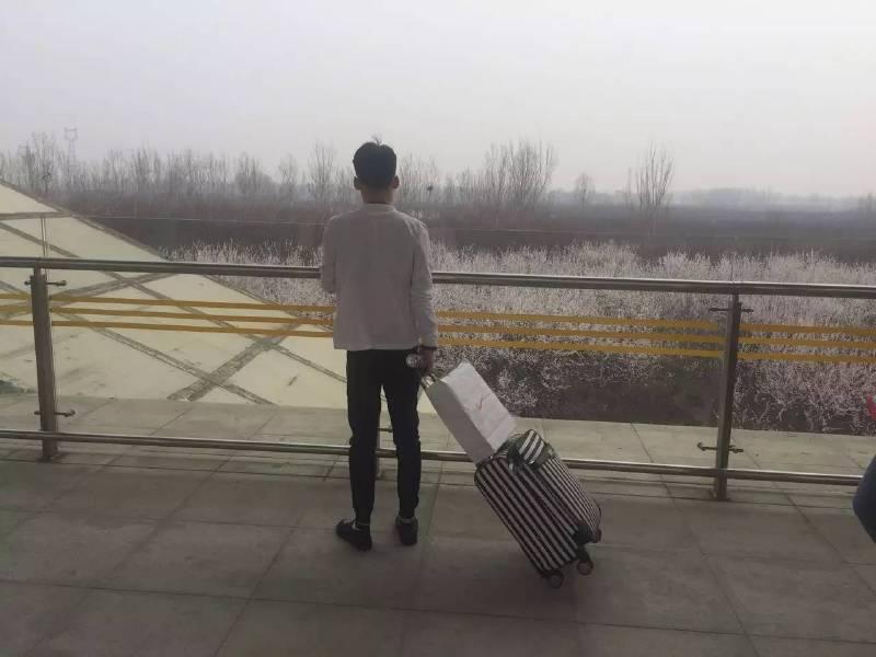 在涿州东站,一片樱花林常常让回家的人驻足。图 / 易方兴