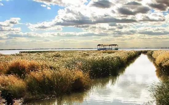 哈素海,蒙古语哈拉乌素海的简称,意为黑水湖。